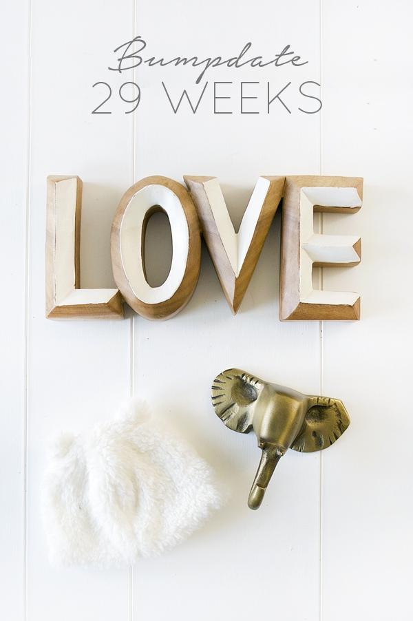 29 Week Baby Update